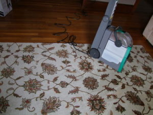 big green carpet steam cleaning